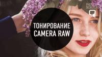 Тонирование фотографий (урок Photoshop)