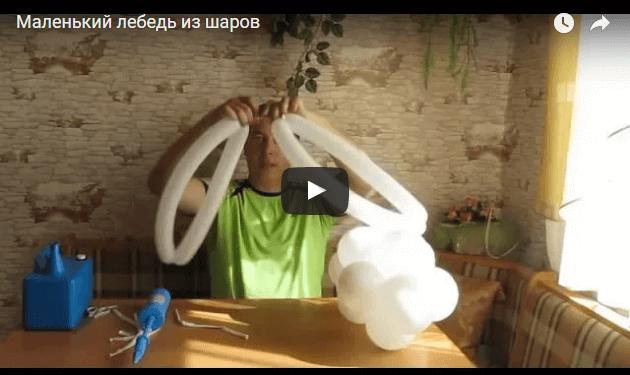 Лебедь из ШДМ