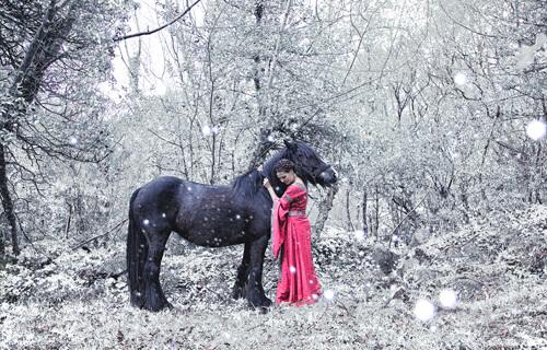 потрясающий зимний кадр