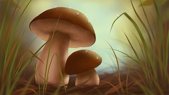 Рисунок гриба