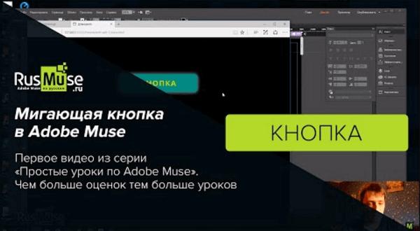 Мигающая кнопка в Adobe Muse