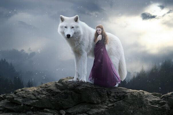 Коллаж - девушка с волком