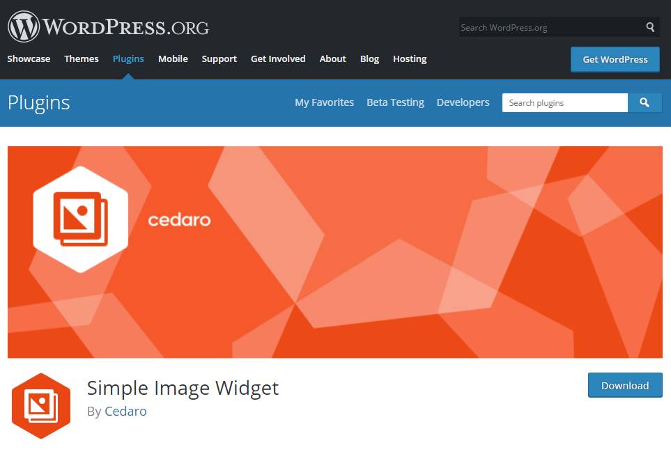 Simple Image Widget