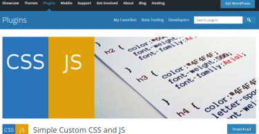 Simple Custom CSS & JS